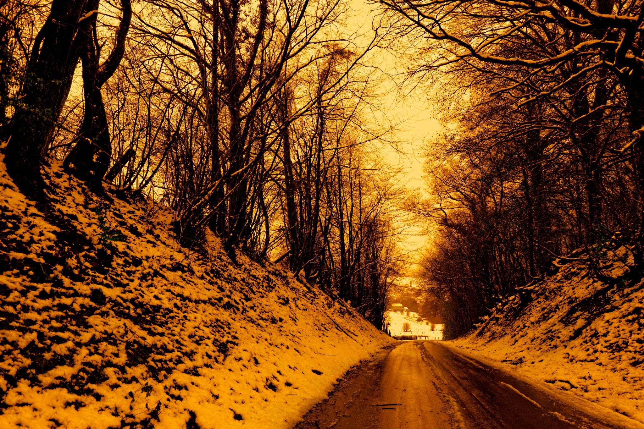Ethe photographie nature par Stéphane Thirion etix photos