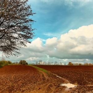 Champs labouré et nuage par Stéphane Thirion